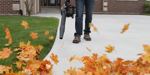 Leaf Removal, Leaf Removal service, Fall Clean Up, Spring Clean Up,